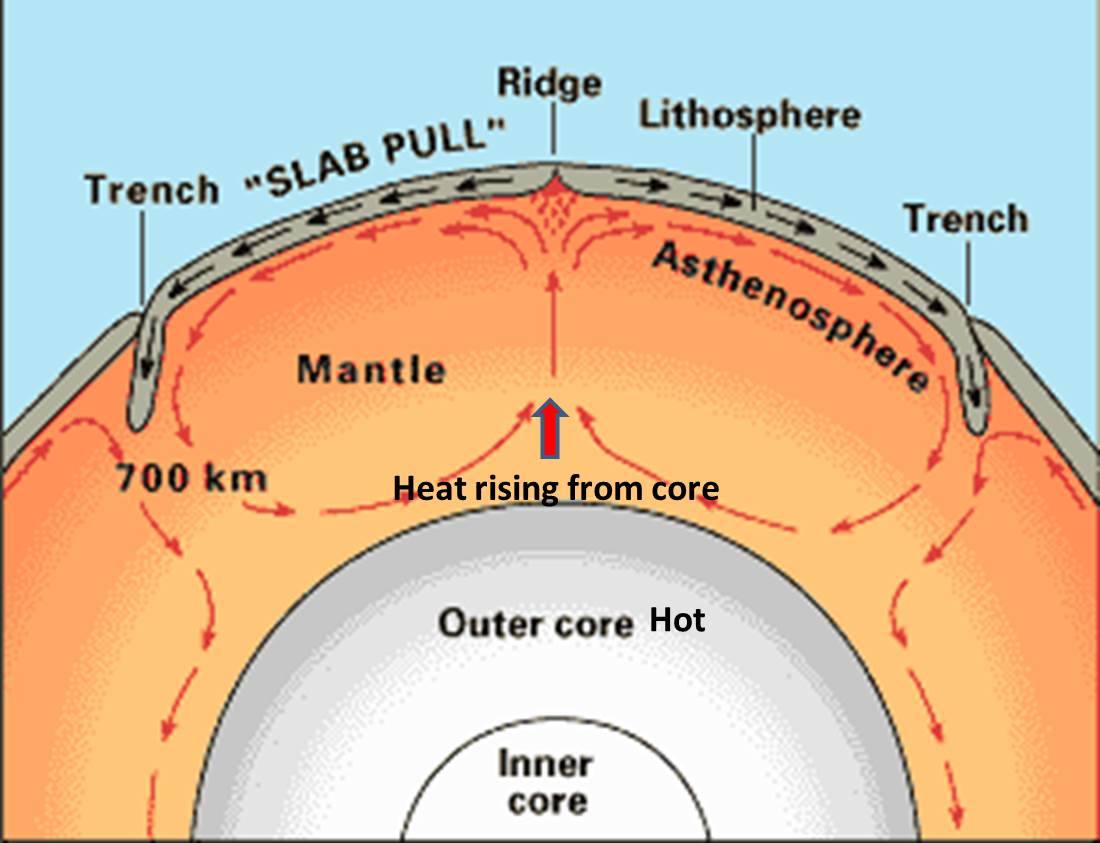 Terri mathews the lithospheric plates float on the asthenosphere and move with the convection cells plate tectonic movement results from the rise and fall of pooptronica