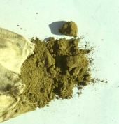 Lawsonia inermis. Commercial henna powder. Lythraceae