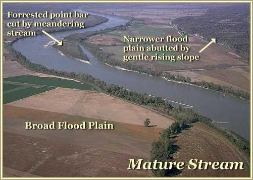 Mature stream